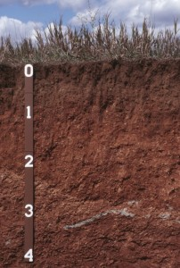 2016-08-16.Ag Blog.Soil_profile_in_pit3_1024