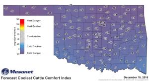 2016-12-18.cattlecomfort.day2_min